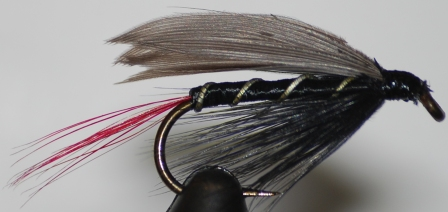 Blae & Black Red Tail Wet Fly