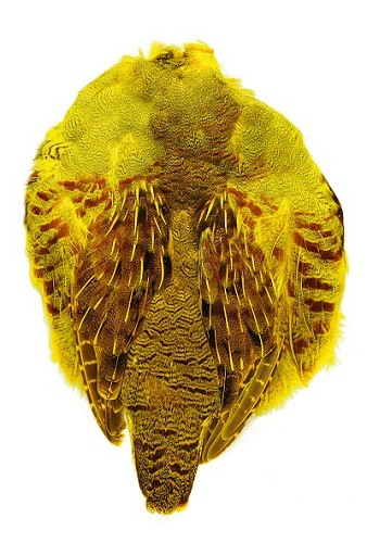 English Partridge Skin Dyed Yellow